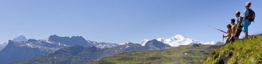 contactez nous domaine skiable le grand massif en haute. Black Bedroom Furniture Sets. Home Design Ideas